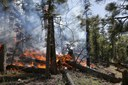 Сотрудники полиции предупреждают о пожароопасном сезоне